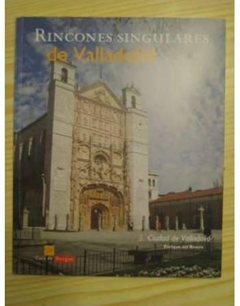 RINCONES SINGULARES DE VALLADOLID- 5. CIUDAD DE VALLADOLID