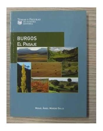 TEMAS Y FIGURAS DE NUESTRA HISTORIA: BURGOS Y SUS VILLAS....