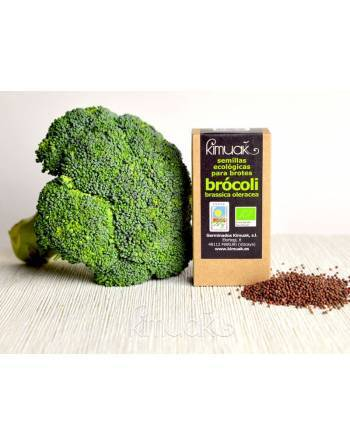 Semillas germinar Brócoli Kimuak